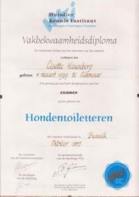 Vakbekwaamheids Diploma